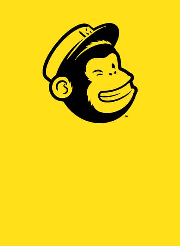 mailchimp course for beginners